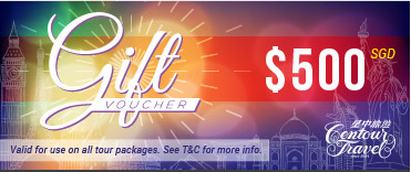 travel voucher 1